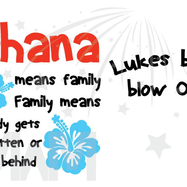 Disney Family Matching Shirts Ohana means family Family means nobody gets forgotten or left behind Lukes bday Blow Out married with mickey mwm