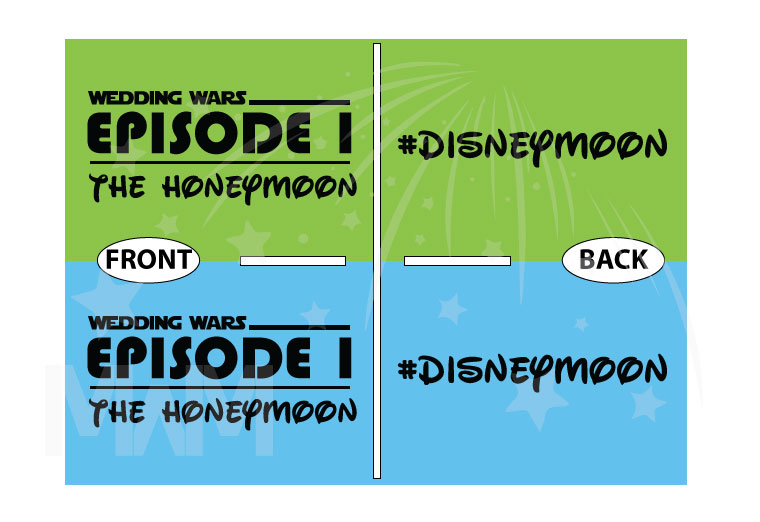 Wedding Wars, Episode 1, The Honeymoon, Disneymoon married with mickey world's cutest matching couple shirts